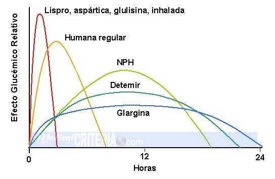 Farmacocinética de los Diferentes Tipos de Insulina