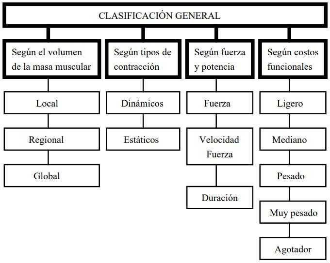 Ejercicio físico: Clasificación general