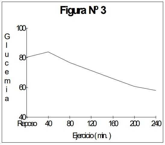 Ejercicio físico: Glucemia durante el ejercicio