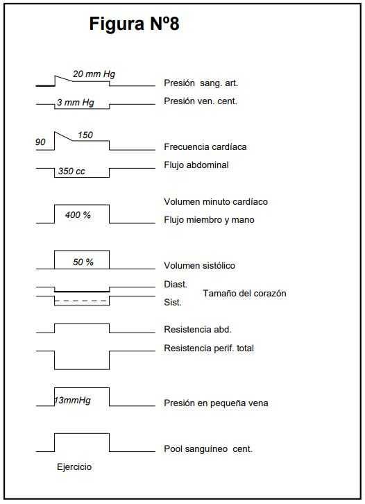 Ejercicio físico: Resumen de respuestas hemodinámicas